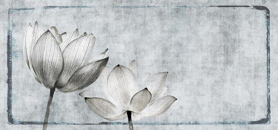 canvas | lotus di N.O.W. Edizioni | Quadri / Murales