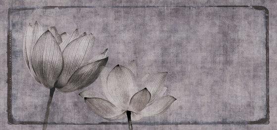 canvas   lotus di N.O.W. Edizioni   Quadri / Murales