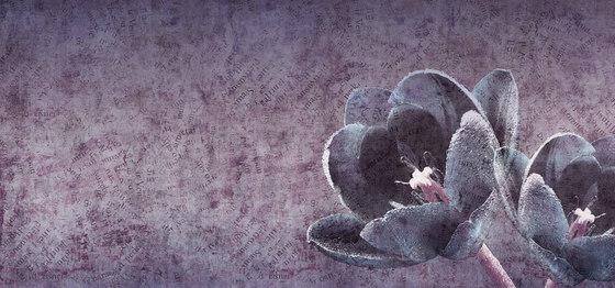 canvas | tulip by N.O.W. Edizioni | Wall art / Murals