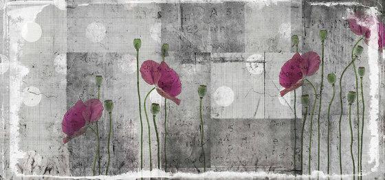 grunge | april by N.O.W. Edizioni | Wall art / Murals