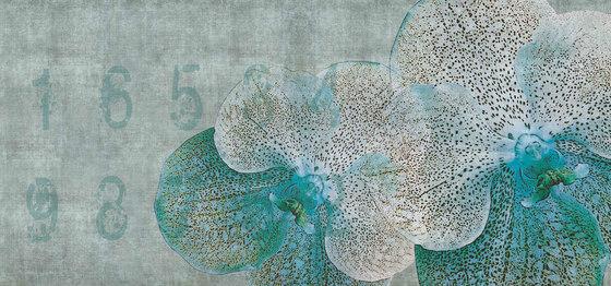 concrete | orchid de N.O.W. Edizioni | Arte