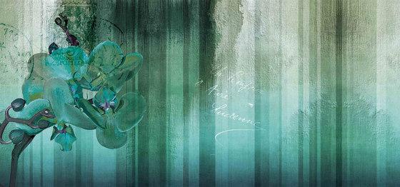 wallpaint | orchid by N.O.W. Edizioni | Wall art / Murals
