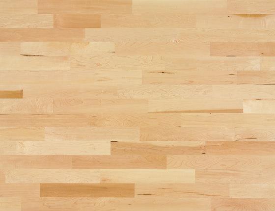 Monopark Maple canadian 15 by Bauwerk Parkett | Wood flooring
