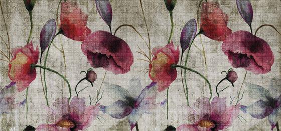watercolor   poppies de N.O.W. Edizioni   Arte