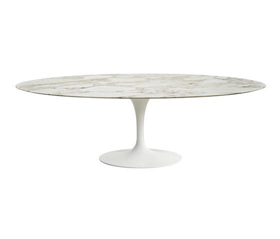 Saarinen Dining Table Oval de Knoll International | Mesas comedor