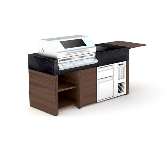 bbqube Professional  1800 Beefeater Grill de OCQ   Barbacoas