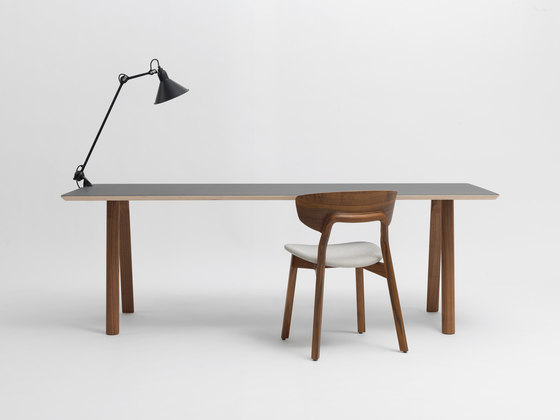 Rail Solo by Zeitraum | Desks