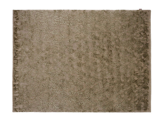 Indoor Handknotted | Fleurs by Warli | Rugs