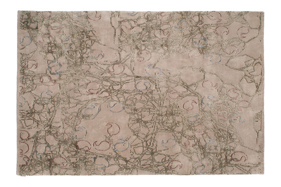 Indoor Handknotted | Paisley by Warli | Rugs