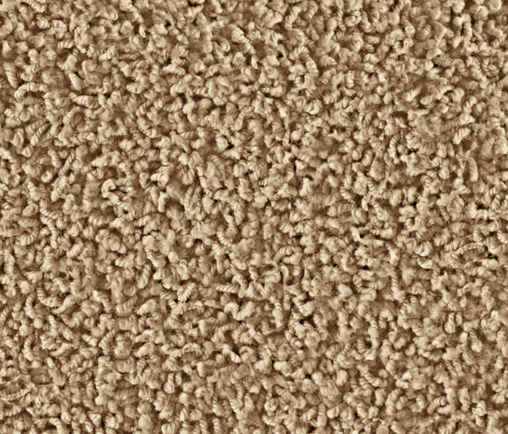 Frizzle 1401 Gobi by OBJECT CARPET | Wall-to-wall carpets