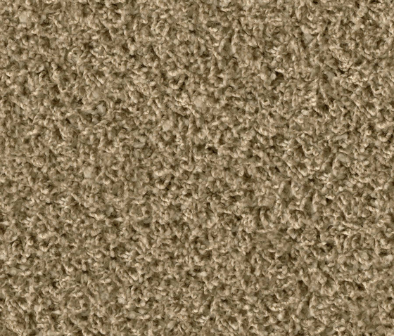 Poodle 1431 Playa by OBJECT CARPET | Rugs