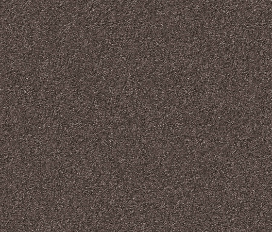 Silky Seal 1233 Taupe by OBJECT CARPET | Rugs