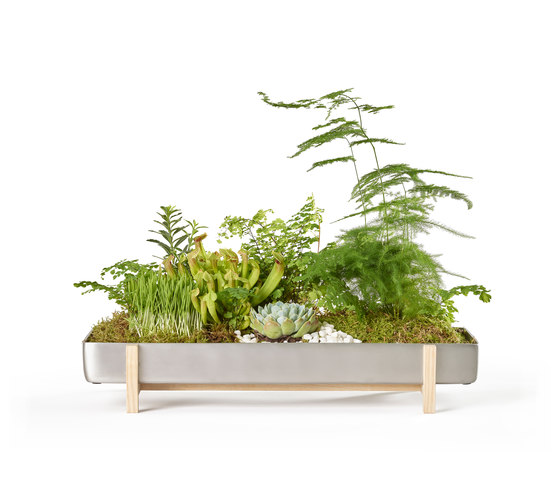 Greenery Flower Tray by Design House Stockholm | Plant pots