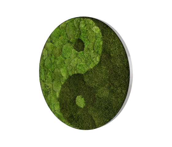 Circle | Pole moss yin and yang 80cm by styleGREEN | Living / Green walls