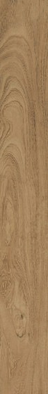 Geowood Iroko by Casalgrande Padana | Ceramic panels