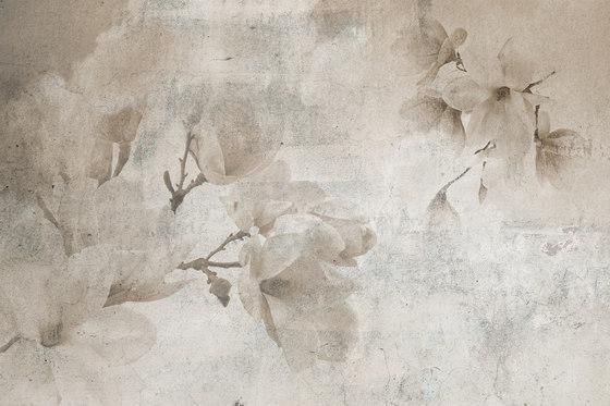 Magnolia by INSTABILELAB | Wall art / Murals