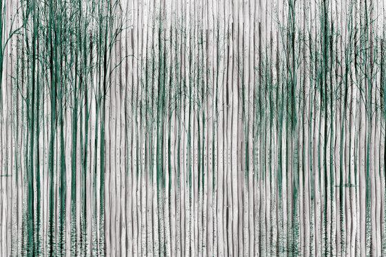 Shady di INSTABILELAB | Quadri / Murales
