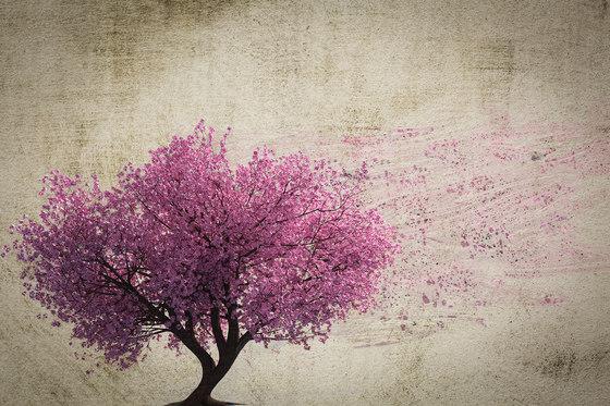 Spring Wind by INSTABILELAB | Wall art / Murals