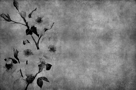 Winter Flower de INSTABILELAB | Arte