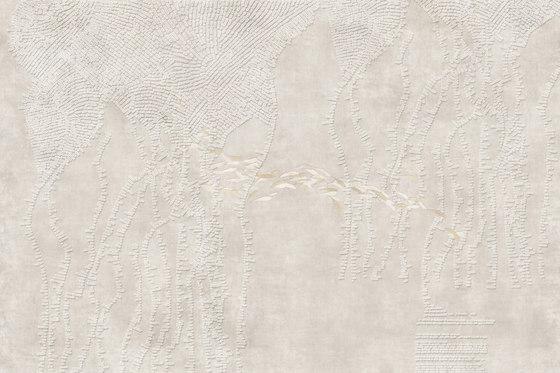 Alga de GLAMORA | A medida