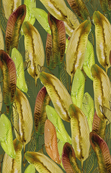 Platano by Inkiostro Bianco   Wall coverings / wallpapers