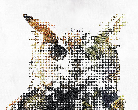 Wild by Inkiostro Bianco | Wall coverings / wallpapers