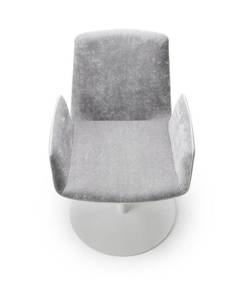 Amelie   Armchair mit Tellerfuß von FREIFRAU MANUFAKTUR   Stühle