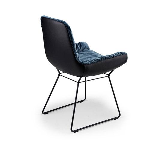 Leya | Armchair Low mit Drahtgestell von FREIFRAU MANUFAKTUR | Stühle