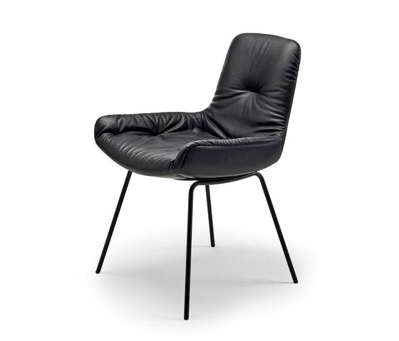 Leya | Armchair Low with steel frame de FREIFRAU MANUFAKTUR | Chaises