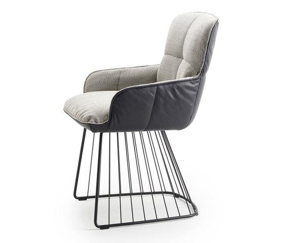 Marla | Armchair Low with harp frame by Freifrau Sitzmöbelmanufaktur | Chairs