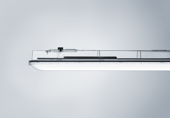 AMPHIBIA by Zumtobel Lighting | Suspended lights