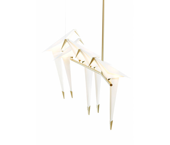 Perch Light Branch by moooi   Suspended lights