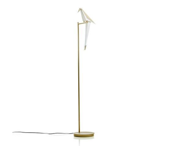 Perch Light Floor by moooi | Free-standing lights