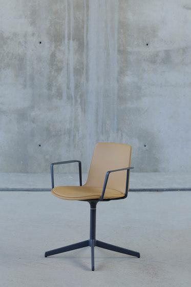Lottus Confident Chair de ENEA | Sillas