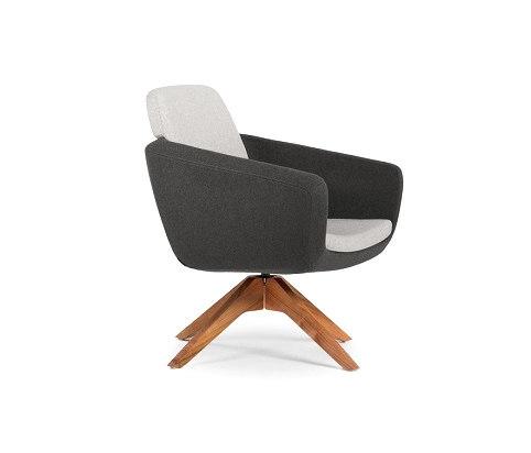 Lounge Chair - Delano de BK Barrit | Fauteuils