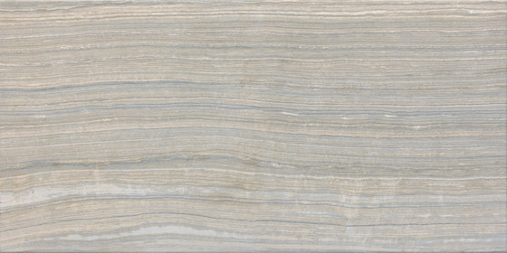 Eramosa Silver Naturale by Rondine | Ceramic tiles