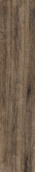 Greenwood Greige de Rondine | Carrelage céramique