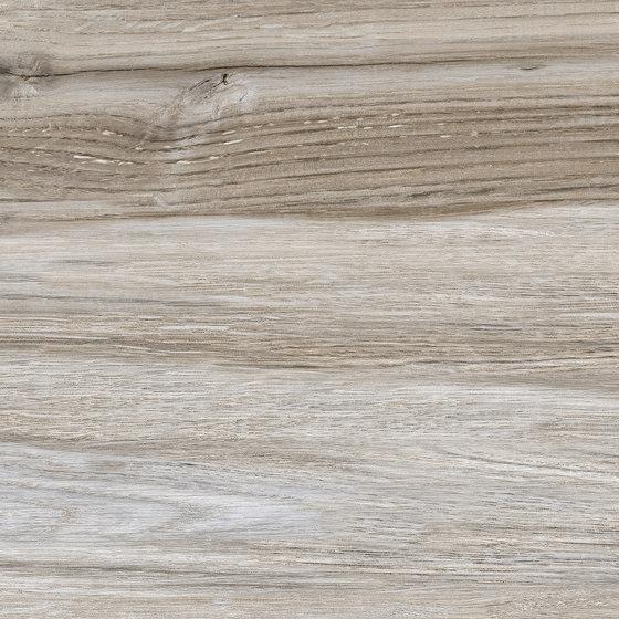 Woods Olivo di Ceramica Mayor | Piastrelle ceramica