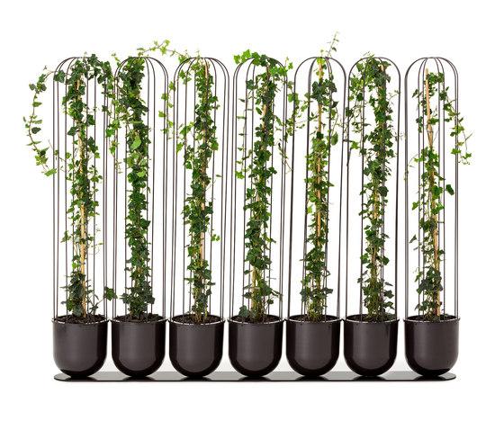 Cacti planter by nola | Plant pots
