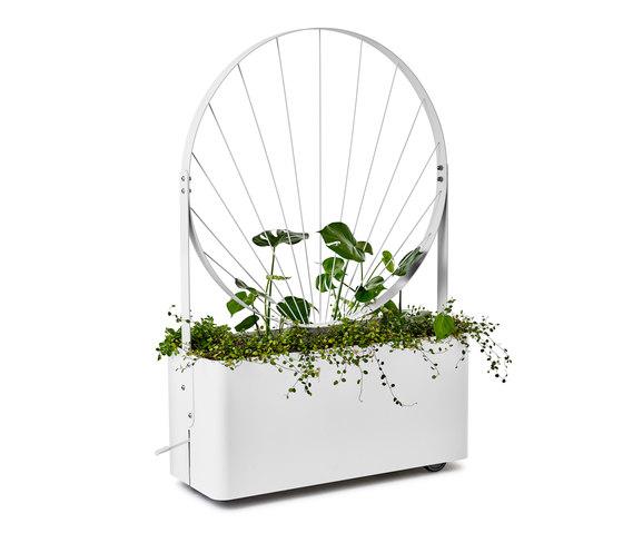 Gro planter de nola | Pots de fleurs