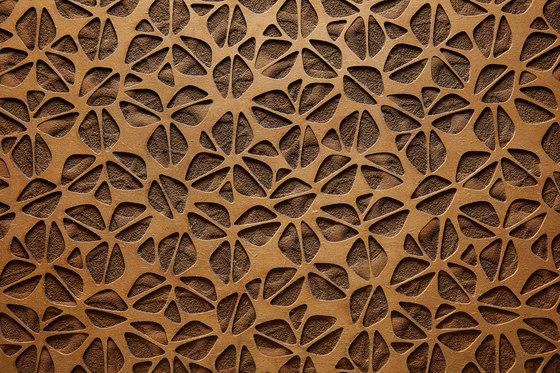 Louis by strasserthun. | Wood panels