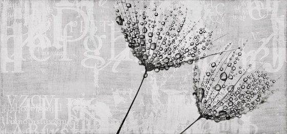 canvas   drop di N.O.W. Edizioni   Quadri / Murales