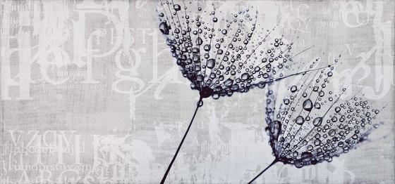 canvas | drop di N.O.W. Edizioni | Quadri / Murales