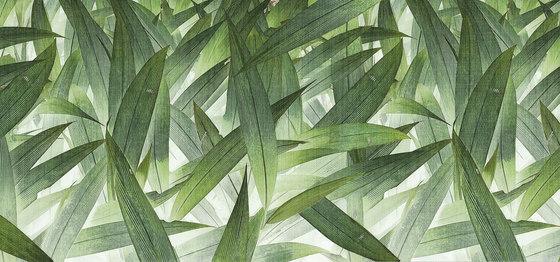 jungle | foliage di N.O.W. Edizioni | Quadri / Murales