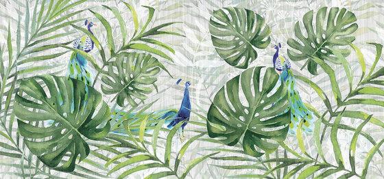 jungle | tropicalia de N.O.W. Edizioni | Arte