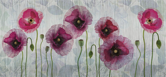 textile | papaver by N.O.W. Edizioni | Wall art / Murals