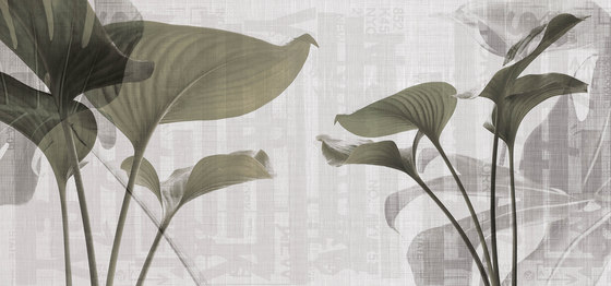 urban | leaves by N.O.W. Edizioni | Wall art / Murals