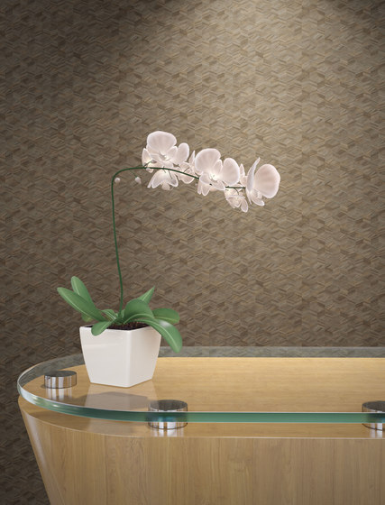 Source One Exclusive | Sassafras by Distributed by TRI-KES | Wall coverings / wallpapers