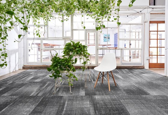Discord™ by Bentley Mills | Wall-to-wall carpets
