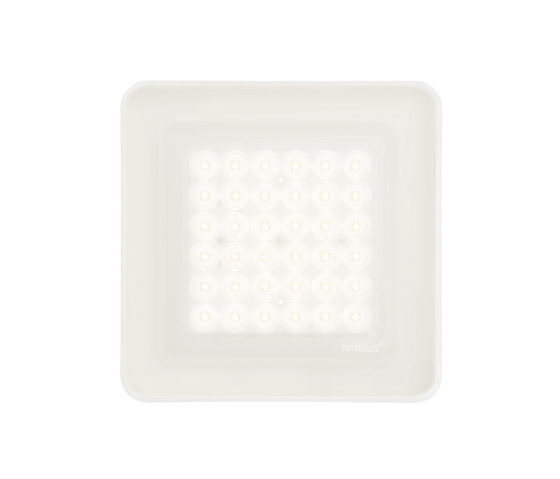 modul Q 36 frame by Nimbus | Ceiling lights